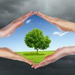 Вовед во еколошкиот проблем – теолошки погледи