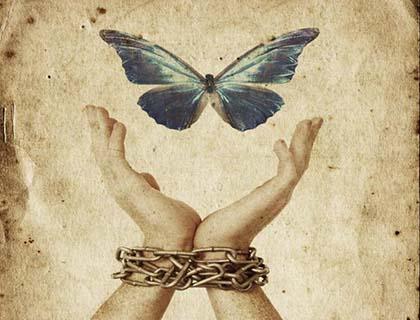 freedom_chain