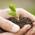 Проблемот со еколошката криза – Епископ Јован Пуриќ